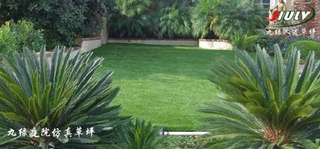 假草皮人造草坪高清图片