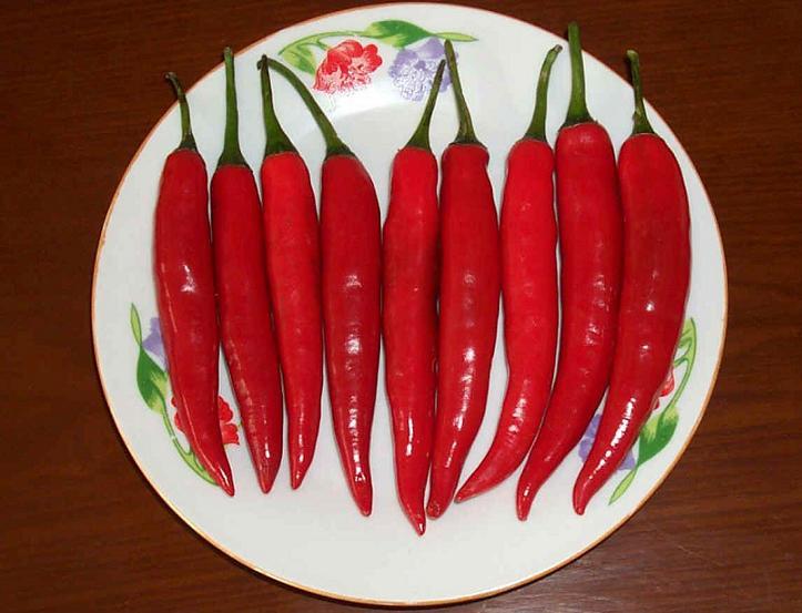 美人辣椒 用途极为广泛,如是:调味,调色,配料,酱料,提味,炒菜,肉、凉品、拌饭,泡面,蘸水、火锅、早餐、可加工成剁辣椒,辣椒酱、泡菜,等菜肴、食品调味的绝佳选择! 中国辣的辣椒在哪里?很多人都公认是在云南,云南是我国辣椒的主要种植地区之一。《中国蔬菜品种资源目录》上登记的辣椒资源,全国有约1000多份辣椒种植资源,而云南就有近100份。 砚山县同和辣椒有限责任公司成立于2004年,公司位于中国云南的东部,是一片神奇美丽、富有浓郁民族特色的地方文山壮族苗族自治州砚山县,公司是一家主要从事 小米辣, 红