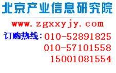 2013中国房地产中介服务业市场发展战略规划及投资前景分析报告