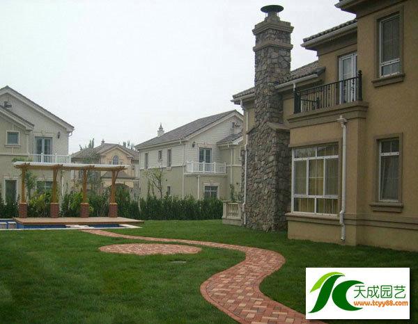 昆山别墅花园设计防腐木车棚葡萄架阳光房日式欧式花园设计天成园艺
