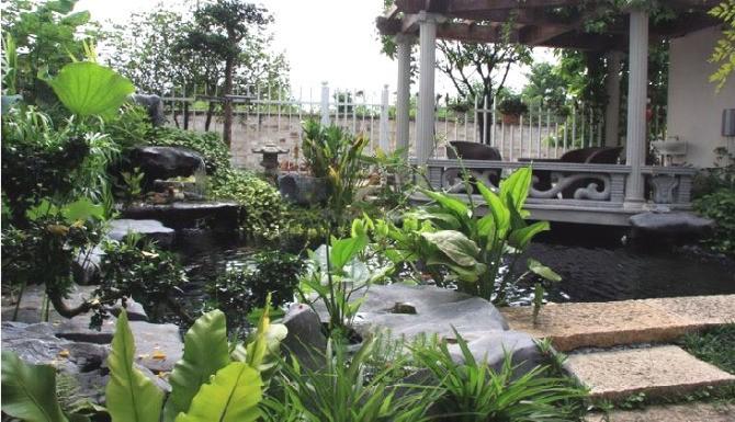 小水池設計_小水池設計價格