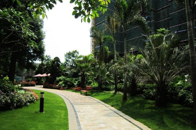 广西小区植物绿化搭配南宁小区专业绿化设计施工