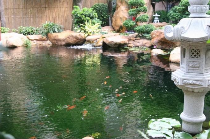 南宁精致庭院景观设计南宁专业庭院水池设计施工-广西礼品工艺品 广图片