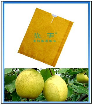 梨套袋、黄金梨袋