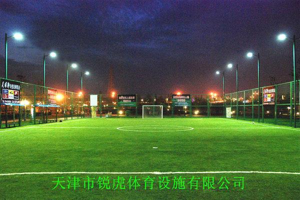 天津专业销售批发人工草皮、人造草坪、人造草皮、人工草坪、塑料草坪、仿真草坪
