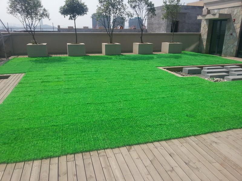 北京塑料草坪批发塑料草坪图片13269688586