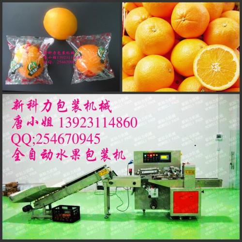 永兴冰糖橙-甜橙自动橙子包装机,湖南橙子包装机定购