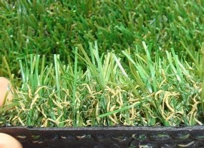 北京塑料草皮厂家塑料草坪批发