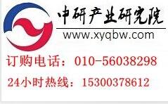 中国皮带机(带式输送机)行业趋势预测及投资风险评估报告2015-2020年