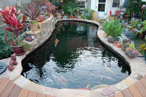 室外小魚池效果圖