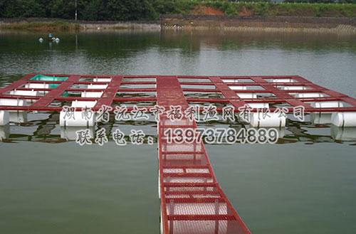 淡水网箱、网箱养鱼设备、淡水养殖网箱平台