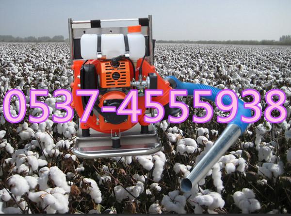 优质采棉机-节能高效棉花采摘机-轻便汽油式采棉机