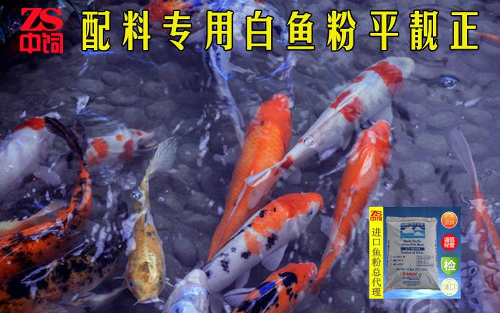 绍兴甲鱼饲料多少钱一吨、哪里有进口鱼粉卖收购