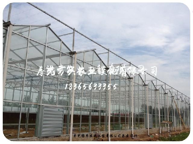 山东蔬菜大棚 优质的智能温室万兴农业设施供应