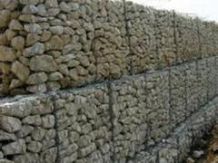 出口堤坡防护网:哪有供应专业的堤坡防护网