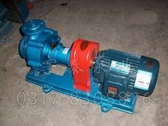 沧州口碑好的RY导热油泵出售 RY导热油泵价钱如何