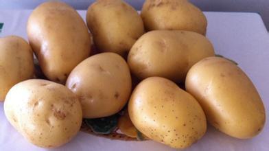 深圳蔬菜配送青青草网站专业为工厂企业学校提供食材配送