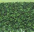 【散装茶叶批发】济南韵盛商贸公司大量供应各种散茶
