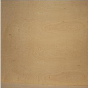 18mm杨木胶合板 规格1220x2440