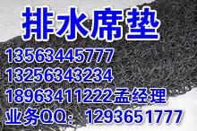 甘肃土工排水席垫0634-6679066孟总
