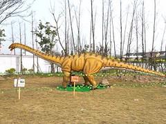 自贡口碑好的恐龙骨架哪里可以买到怎么挑选恐龙骨架