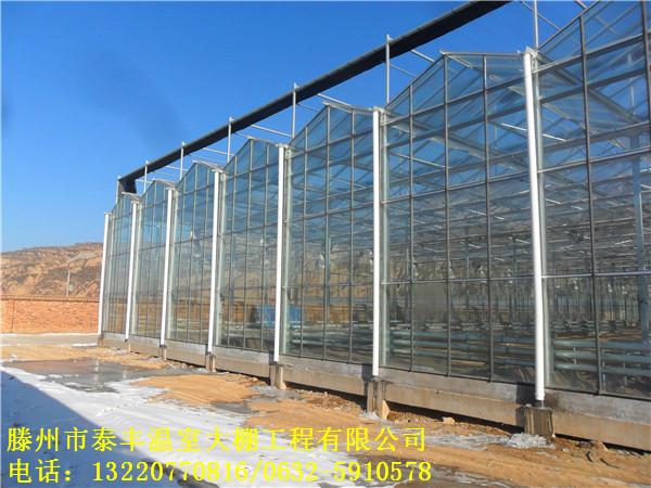 玻璃温室建筑设计要求