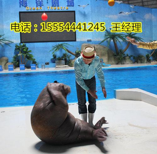 租�U羊��R��F表演-三�T�{市
