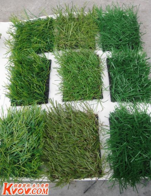 塑料草坪厂北京人工仿真草皮厂