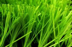 CCG共创人造草 、江苏共创人造草、体育场地草坪、休闲草坪、幼儿园草坪、图案草坪