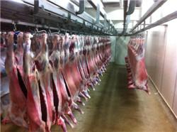 牛羊肉批发 西餐牛排肉类批发 请选天和肉类