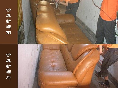 济南提供好的皮革护理保养服务  :山东皮革护理机械厂家
