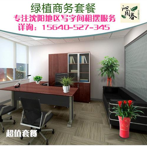 沈阳同城植物租赁花卉植物养护绿植租摆企事业单位办公室植物租赁养护