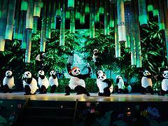 西安一流的西安舞台剧演出哪里有、合理的西安儿童剧