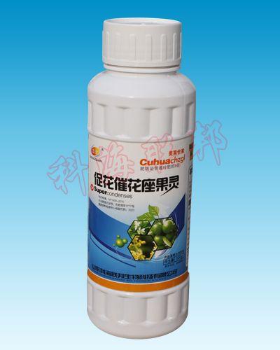 潍坊价位合理的果树专用叶面肥厂家直销:福建果树专用叶面肥