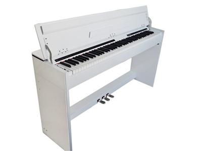 福州电钢琴青青青免费视频在线:买电钢琴到舒思曼电钢琴