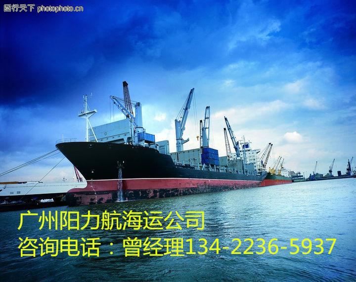 深圳沙井发大柜到上海海运公司、光明发大柜到保定运费多少钱1