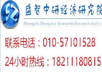 中国房地产中介服务行业市场深度研究及发展战略研究报告