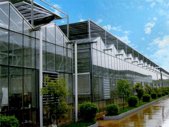 生态酒店,温室主题公园工程;       无土栽培,景观园艺工程设计施工