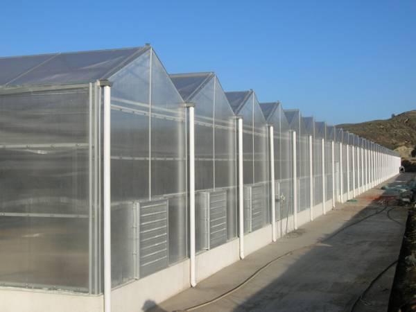 智能型温室大棚,农业日光温室,农业灌溉,轻钢结构等工程的设计和施工.