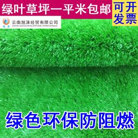 昆明彩色跑道制作商 云南人工草坪总代理 人造草坪专卖