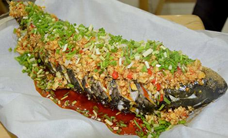 河北纸上烤鱼加盟 山西纸上烤鱼加盟