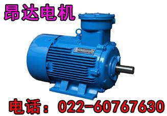 电动机工作方式/YB225M-2-45KW隔爆型三相异步电动机