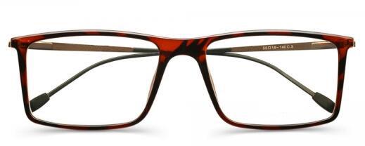 广东广州塑钢眼镜架