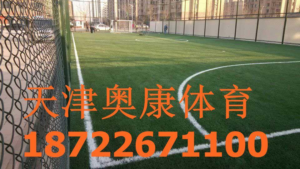 利通区足球场塑胶草坪/足球场人造草坪施工