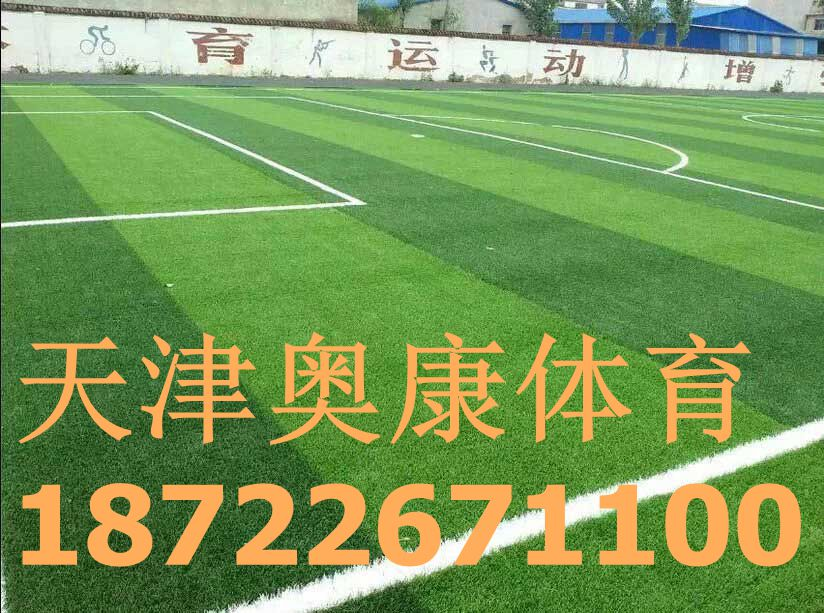 红寺堡区足球场塑胶草坪/足球场人造草坪施工