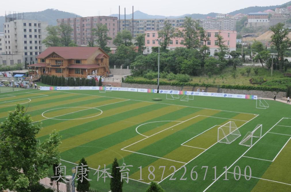 盐池县足球场塑胶草坪/足球场人造草坪施工