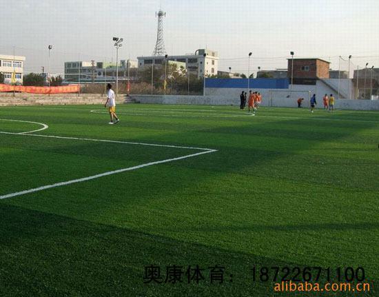 惠农区足球场塑胶草坪/足球场人造草坪施工