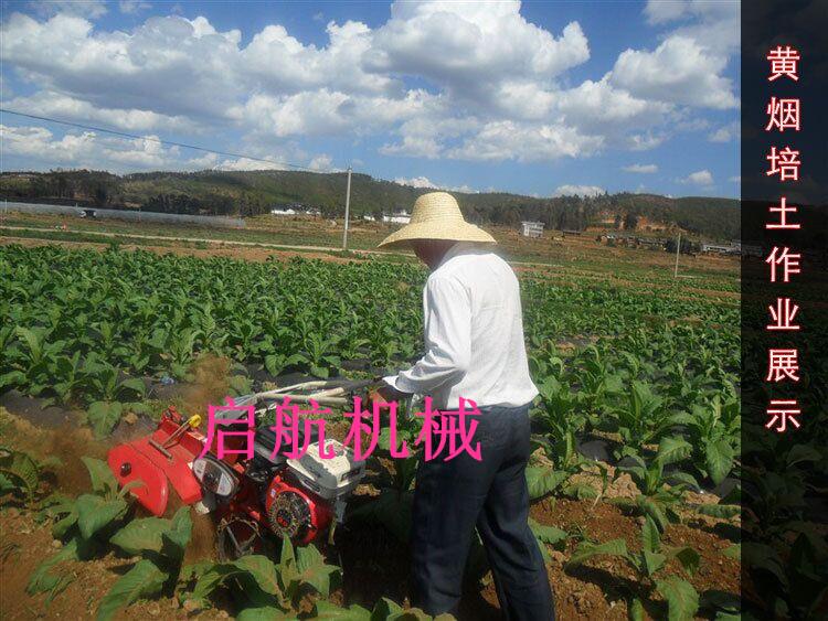 楚雄州柴油式田园管理机葡萄培土机