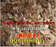 临桂县沙苑子种子哪里有卖的目前市场行情怎么样多少钱一斤