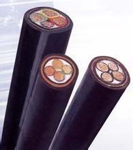 界首攀枝矿用通信拉力电缆-安徽界首含不锈钢接头(图)